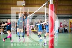 www.darioimparato.com - torneo pallavolo web-417