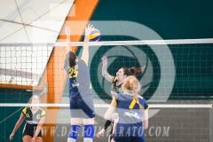 www.darioimparato.com - torneo pallavolo web-436