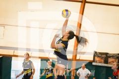 www.darioimparato.com - torneo pallavolo web-441