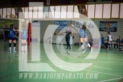 www.darioimparato.com - torneo pallavolo web-442