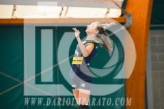 www.darioimparato.com - torneo pallavolo web-444