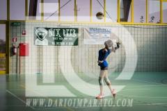 www.darioimparato.com - torneo pallavolo web-451