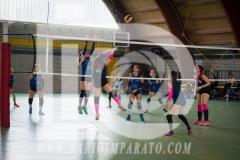 www.darioimparato.com - torneo pallavolo web-453
