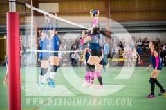 www.darioimparato.com - torneo pallavolo web-455