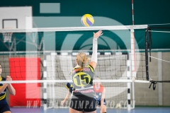 www.darioimparato.com - torneo pallavolo web-459