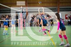 www.darioimparato.com - torneo pallavolo web-460