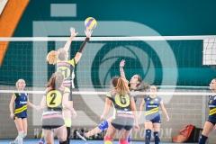 www.darioimparato.com - torneo pallavolo web-466