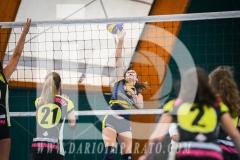 www.darioimparato.com - torneo pallavolo web-468