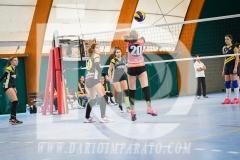 www.darioimparato.com - torneo pallavolo web-472