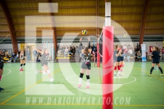 www.darioimparato.com - torneo pallavolo web-482