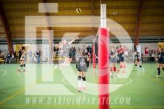 www.darioimparato.com - torneo pallavolo web-483