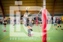 www.darioimparato.com - torneo pallavolo web-484