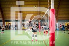 www.darioimparato.com - torneo pallavolo web-485