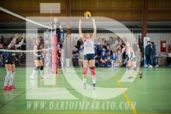 www.darioimparato.com - torneo pallavolo web-490