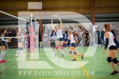 www.darioimparato.com - torneo pallavolo web-492