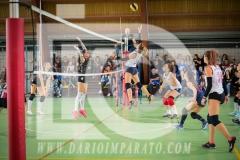 www.darioimparato.com - torneo pallavolo web-493