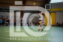 www.darioimparato.com - torneo pallavolo web-494