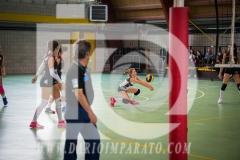 www.darioimparato.com - torneo pallavolo web-497