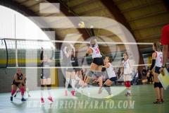 www.darioimparato.com - torneo pallavolo web-501