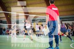 www.darioimparato.com - torneo pallavolo web-505