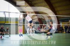 www.darioimparato.com - torneo pallavolo web-506