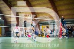 www.darioimparato.com - torneo pallavolo web-510