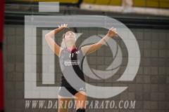 www.darioimparato.com - torneo pallavolo web-511