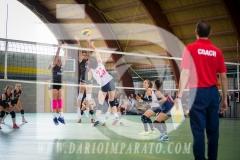 www.darioimparato.com - torneo pallavolo web-512