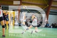 www.darioimparato.com - torneo pallavolo web-513