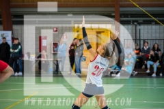 www.darioimparato.com - torneo pallavolo web-514