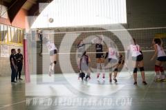 www.darioimparato.com - torneo pallavolo web-516