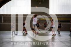 www.darioimparato.com - torneo pallavolo web-518