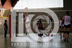 www.darioimparato.com - torneo pallavolo web-519