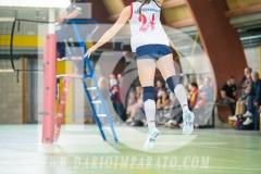www.darioimparato.com - torneo pallavolo web-523