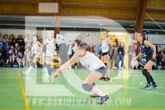 www.darioimparato.com - torneo pallavolo web-524