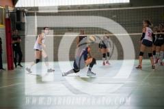www.darioimparato.com - torneo pallavolo web-525