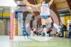 www.darioimparato.com - torneo pallavolo web-526