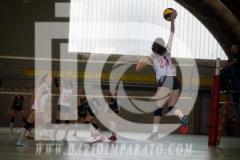 www.darioimparato.com - torneo pallavolo web-528