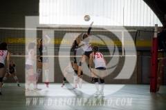 www.darioimparato.com - torneo pallavolo web-532