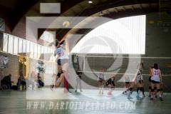 www.darioimparato.com - torneo pallavolo web-533