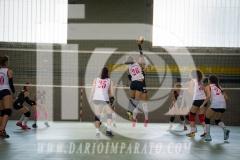 www.darioimparato.com - torneo pallavolo web-534