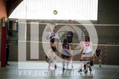 www.darioimparato.com - torneo pallavolo web-540