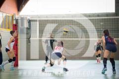 www.darioimparato.com - torneo pallavolo web-541