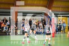 www.darioimparato.com - torneo pallavolo web-542