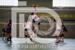 www.darioimparato.com - torneo pallavolo web-543