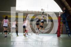 www.darioimparato.com - torneo pallavolo web-544