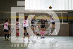 www.darioimparato.com - torneo pallavolo web-545