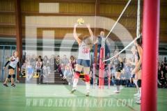 www.darioimparato.com - torneo pallavolo web-548