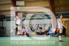 www.darioimparato.com - torneo pallavolo web-554