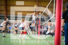 www.darioimparato.com - torneo pallavolo web-557